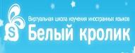 Топ 30 блогов о русском языке 2019 wrabbit.ru